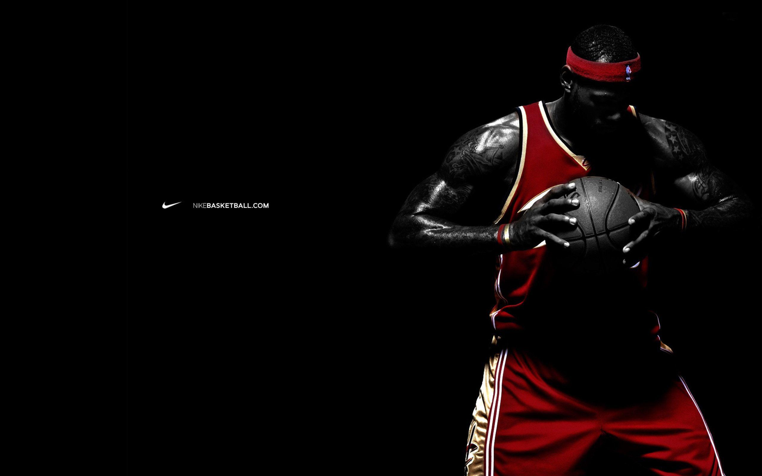 Coolest LeBron James Miami Heat 2013 Best HD  Desktop HD Wallpaper