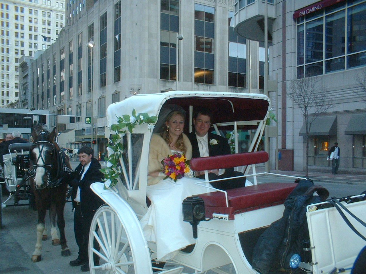 Horse Drawn Wedding Carriage Cincinnati Ohio   OH  Covington HD Wallpaper